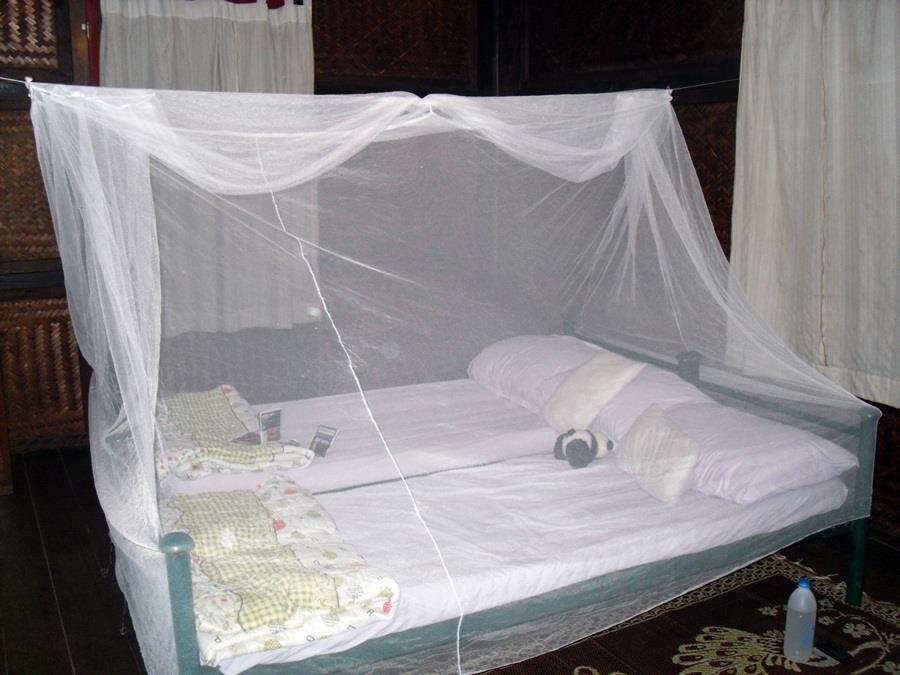 Buy a mosquito net before you travel