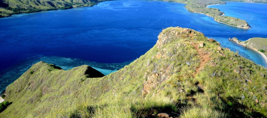 Komodo National Park – Celebrating its 37th Anniversary