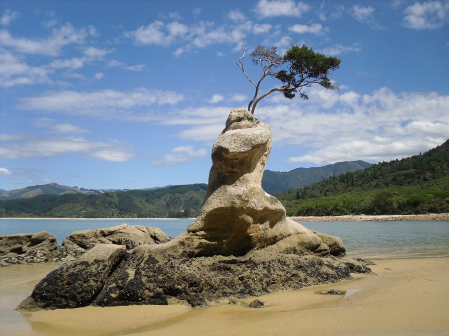tinline-beach-new-zealand