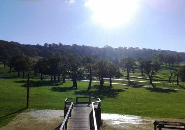 Overlooking Longleat