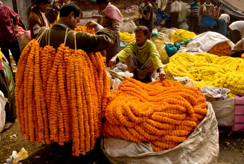 Kolkata Flower Market, Jane McDonald, India