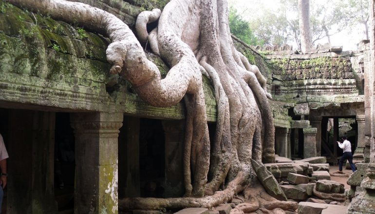 Photo Flashbacks: Our favourite Angkor Ruins…